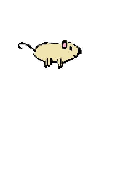 hamster 51